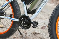 CE Certicificatel 2 Wheel Electric Bicycle Aluminum Alloy Material 36V 250W