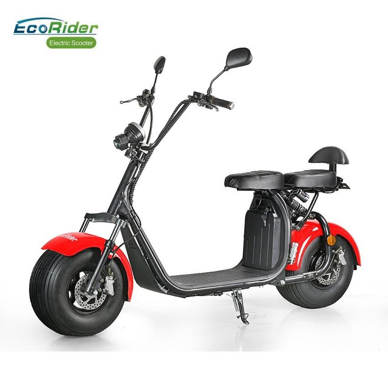 EcoRider Fat Tire 2 Wheel Electric Bicycle , On Off Road Eletric Scooter With Remote