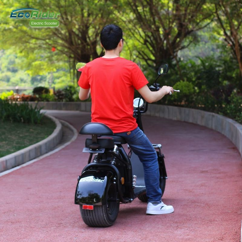 EcoRider Smart Cool 18inch 60v 1500W Harley 2 Wheel Electric Scooter With Seamless Steel Tube Frame and EEC certificate